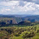 Wollomombi Falls Gorge by Ian Fraser