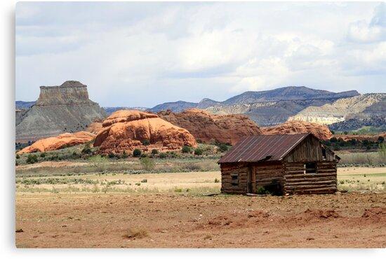 Old Cabin in Kodachrome State Park,Utah,USA by Anthony & Nancy  Leake