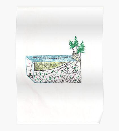 Abstract Set Net Bonsai Poster
