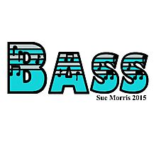 Bass Silver & Turquoise Photographic Print