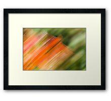 Desert Flower Impressionist No 4 Framed Print
