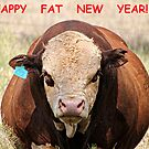 HAPPY FAT NEW YEAR! lol by Helen Akerstrom Photography