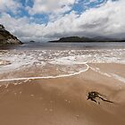 Spain Bay, Port Davey, Southwest Tasmania by tasadam