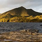 Horseshoe Inlet, Port Davey, Southwest Tasmania by tasadam
