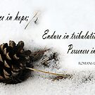 Rejoice, Endure, Persevere ~ Romans 12:12 by Robin Clifton