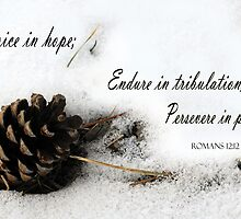 Rejoice, Endure, Persevere ~ Romans 12:12 by Robin Clifton