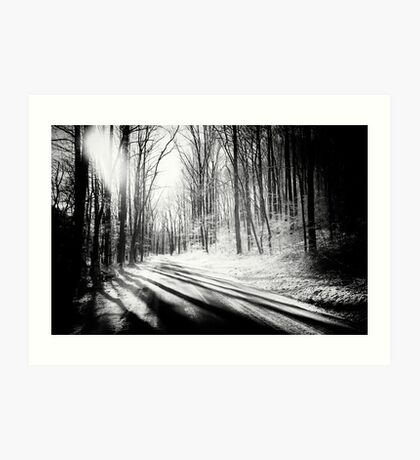 Snow and Tree Shadows Art Print