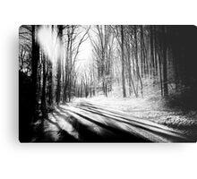 Snow and Tree Shadows Metal Print