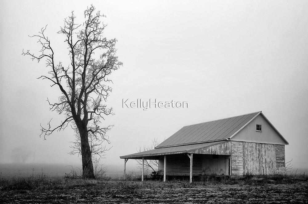 Tree and Barn in Fog by KellyHeaton