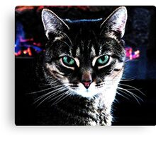 At The Hearth Canvas Print