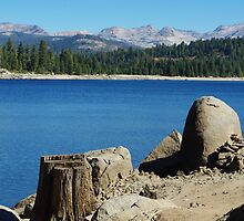 Lakeshore, Ice House Reservoir, California by Claudio Del Luongo