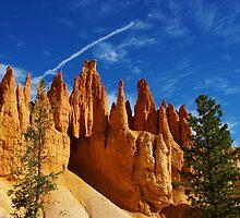 Fantastic orange rock towers, Bryce, Utah by Claudio Del Luongo