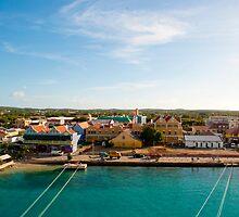 Bonaire Landscape by Samantha Wong