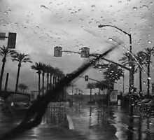 A Rainy Day in California by vorolfo