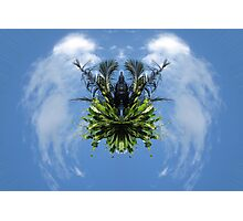 Earth Angel Photographic Print