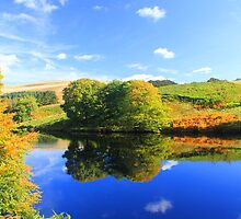 autumn reflections by geoffford