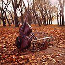 The John Langan Band II by Francesca Wilkins