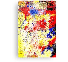 Paint Splash Canvas Print