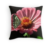 Wit Sandsittertjie Throw Pillow