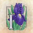 I is for Iris by Stephanie Smith