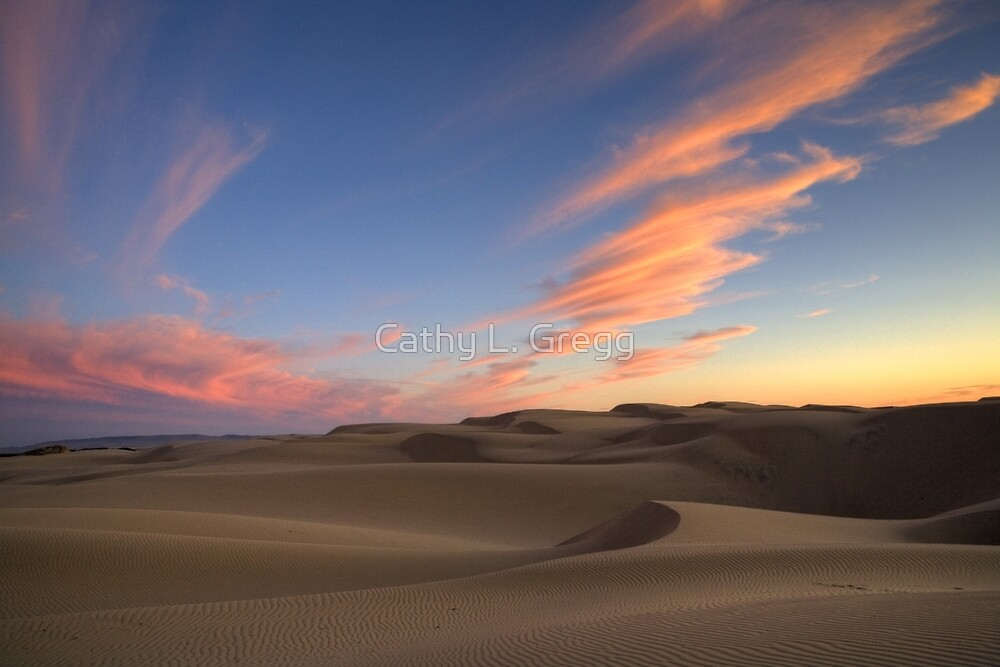 Sunset Over Oceano Dunes by Cathy L. Gregg