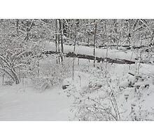 Softly Fallen New Snow Photographic Print