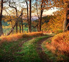 A Kiss of Fall Colors I - Blue Ridge Parkway by Dan Carmichael