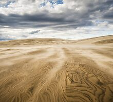 Outer Banks Jockeys Ridge State Park - Swept Away by Dave Allen