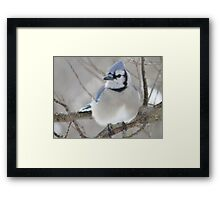Blues and Grays Framed Print