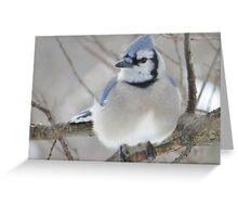 Blues and Grays Greeting Card