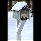Vintage Mailbox Covered With Snow - Middle Island, New York  by © Sophie W. Smith