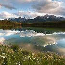 Herbert Lake by peterwey
