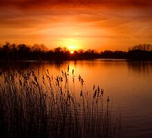 Orange Lake Dusk by EdPettitt