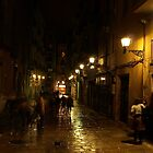 Barcelona after rain by PMJCards