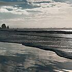 Cannon Beach Pano - Oregon Coast by Mark Heller