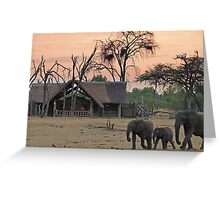 Family stroll Greeting Card