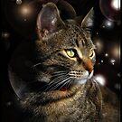 Lady Space New Year by jodi payne