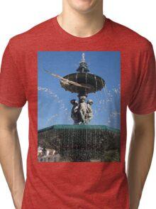 Seagull in Lisbon Tri-blend T-Shirt
