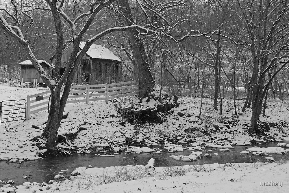 Kentucky Snow by Mary Carol Story