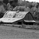 Old Barn  by Mary Carol Story
