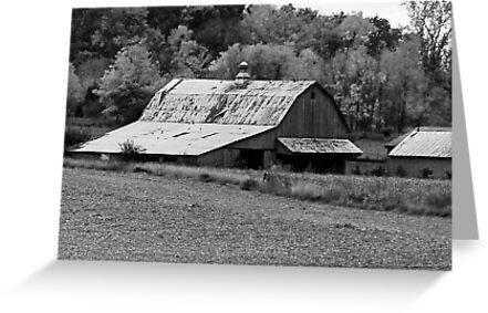 Old Barn  by Mary Carol Story
