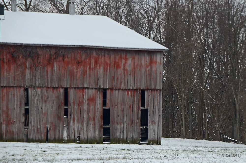 The Old Red Barn by Mary Carol Story