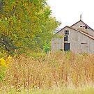 Amana Barn by Mary Carol Story