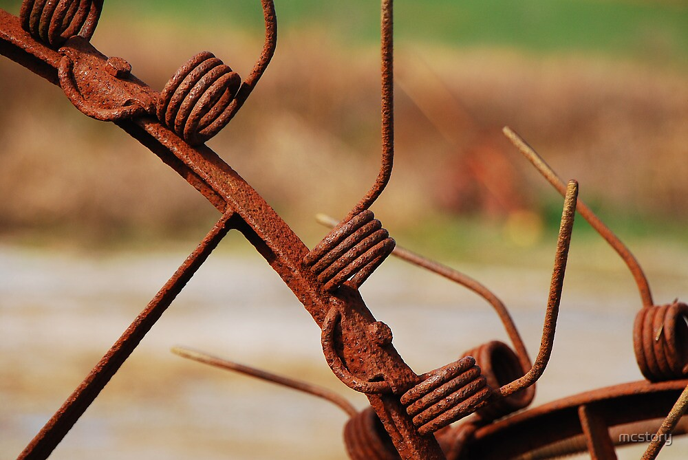 Rusty Tines by mcstory