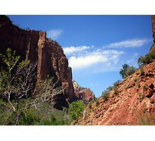 Deep Blue Skies at Zion National Park Photographic Print