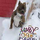 Happy New Year! by Alexandra Wise-Brogna