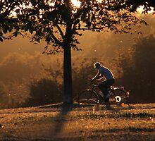 Sunset at the Scharnhauser Park  by Michaela Kopecka