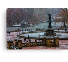 Central Park, The 30 Minute Snow Storm Canvas Print