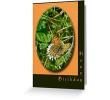 Birthday Greeting Card - American Copper Butterfly Greeting Card