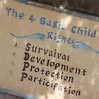 The Right to Survive. by jannina